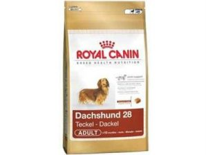 royal canin teckel 28